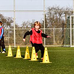Fußballjugend SC Stammheim